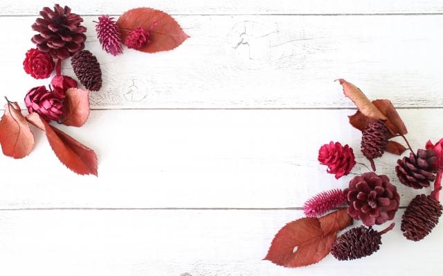 秋をイメージした木ノ実の写真